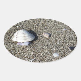Seashells on sand. Summer beach background Oval Sticker