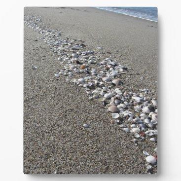 Beach Themed Seashells on sand. Summer beach background Plaque
