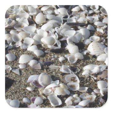Beach Themed Seashells on sand. Summer beach background Square Sticker