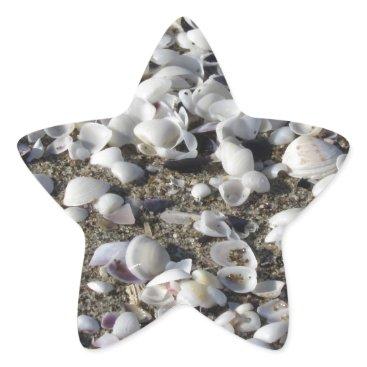 Beach Themed Seashells on sand. Summer beach background Star Sticker