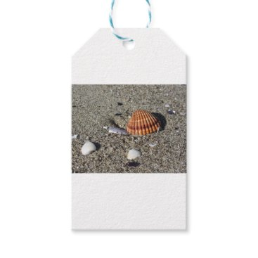 Beach Themed Seashells on sand Summer beach background Top view Gift Tags