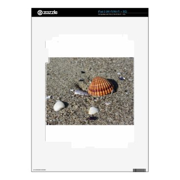 Beach Themed Seashells on sand Summer beach background Top view iPad 2 Decal