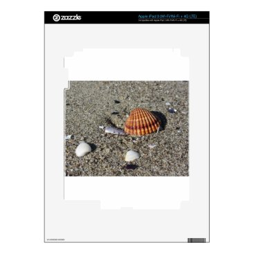 Beach Themed Seashells on sand Summer beach background Top view iPad 3 Skins