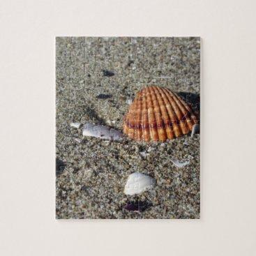 Beach Themed Seashells on sand Summer beach background Top view Jigsaw Puzzle