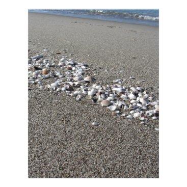 Beach Themed Seashells on sand Summer beach background Top view Letterhead