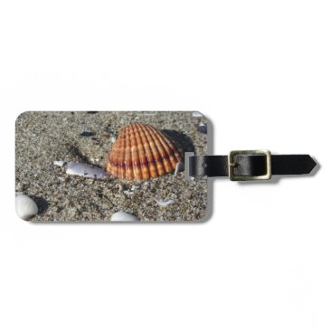 Beach Themed Seashells on sand Summer beach background Top view Luggage Tag