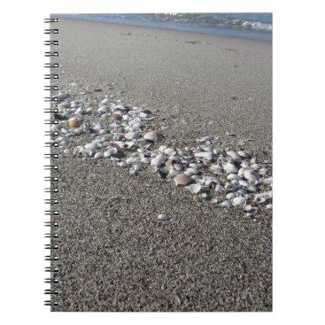 Beach Themed Seashells on sand Summer beach background Top view Notebook