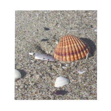 Beach Themed Seashells on sand Summer beach background Top view Notepad