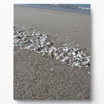 Beach Themed Seashells on sand Summer beach background Top view Plaque