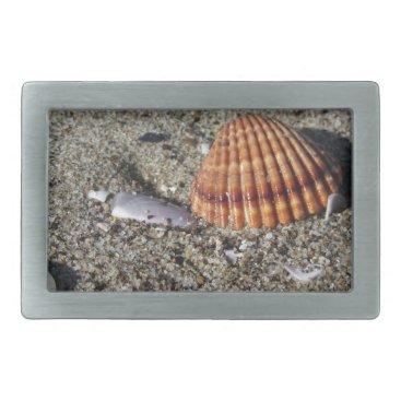 Beach Themed Seashells on sand Summer beach background Top view Rectangular Belt Buckle