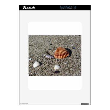 Beach Themed Seashells on sand Summer beach background Top view Skins For iPad