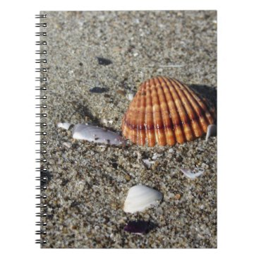 Beach Themed Seashells on sand Summer beach background Top view Spiral Notebook