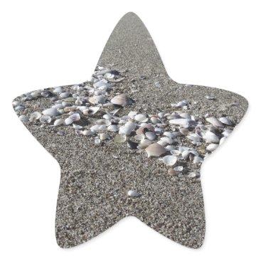 Beach Themed Seashells on sand Summer beach background Top view Star Sticker