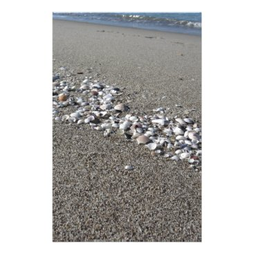 Beach Themed Seashells on sand Summer beach background Top view Stationery