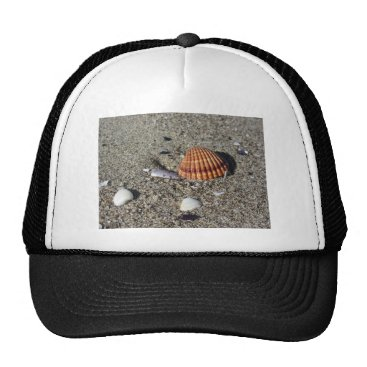Beach Themed Seashells on sand Summer beach background Top view Trucker Hat