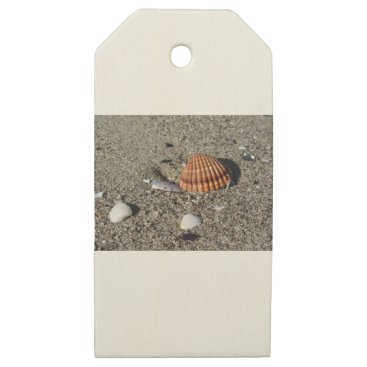 Beach Themed Seashells on sand Summer beach background Top view Wooden Gift Tags