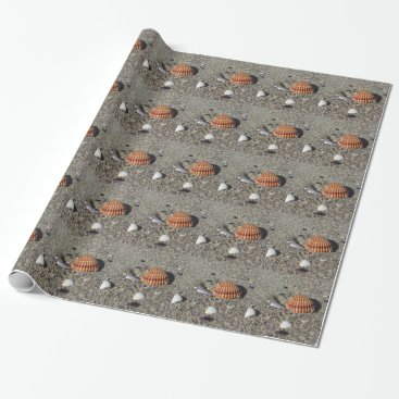 Beach Themed Seashells on sand Summer beach background Top view Wrapping Paper