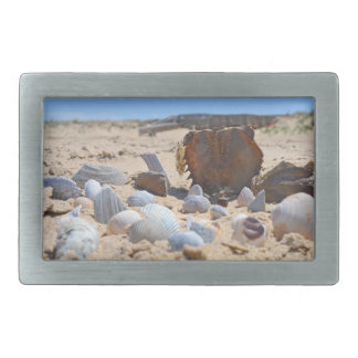 Seashells on the Beach by Shirley Taylor Belt Buckle