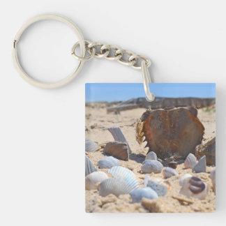 Seashells on the Beach by Shirley Taylor Keychain