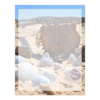 Seashells on the Beach by Shirley Taylor Letterhead