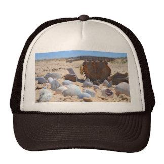 Seashells on the Beach by Shirley Taylor Trucker Hat