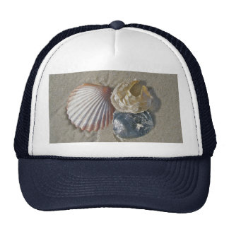 Seashells on the Beach Coordinating Items Trucker Hat