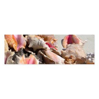 Seashells on the Beach | Turks and Caicos Photo Business Card