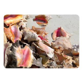 Seashells on the Beach | Turks and Caicos Photo Business Cards