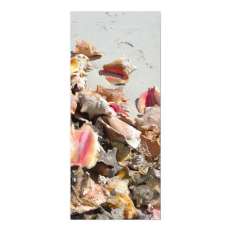Seashells on the Beach | Turks and Caicos Photo 4x9.25 Paper Invitation Card