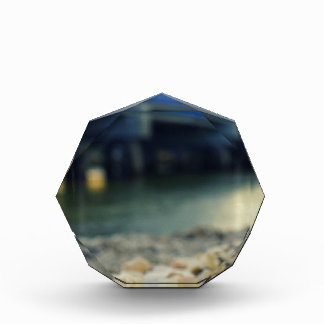Seashells on the Seashore Acrylic Award