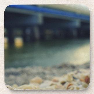 Seashells on the Seashore Coaster