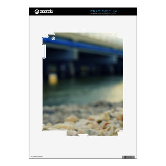 Seashells on the Seashore iPad 2 Decals