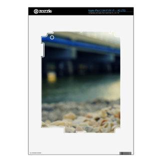 Seashells on the Seashore Skins For iPad 3