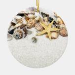 Seashells Ornament