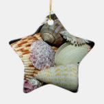seashells ornamento de navidad
