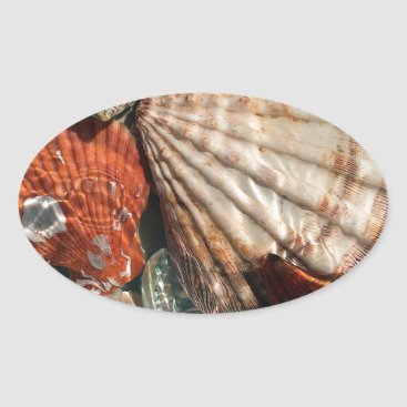 Beach Themed Seashells Oval Sticker