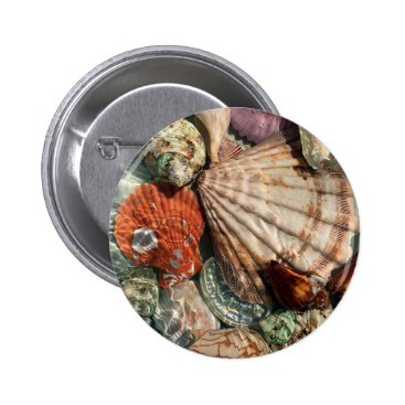 Beach Themed Seashells Pinback Button