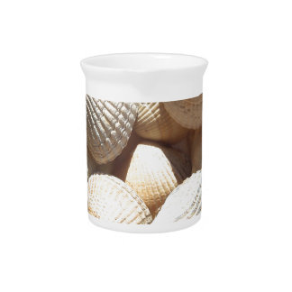 Seashells Pitcher