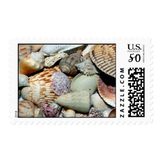 seashells postage