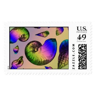 Seashells Postage Stamps