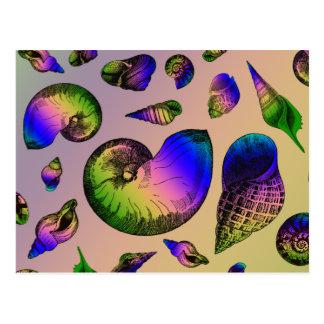 Seashells Postales