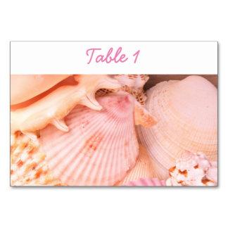 Seashells rosados