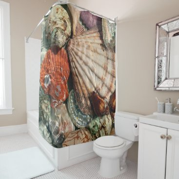 Beach Themed Seashells Shower Curtain