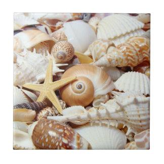 Seashells Small Square Tile