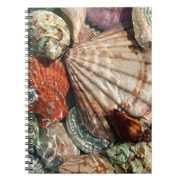 Beach Themed Seashells Spiral Notebook