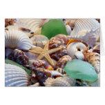 Seashells Starfish & Beach Glass Greeting Card