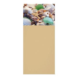 Seashells, Starfish & Sea Glass Rack Cards