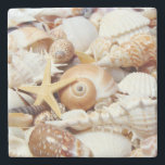 "Seashells Stone Coaster<br><div class=""desc"">Seashells</div>"