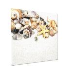 Seashells Stretched Canvas Print