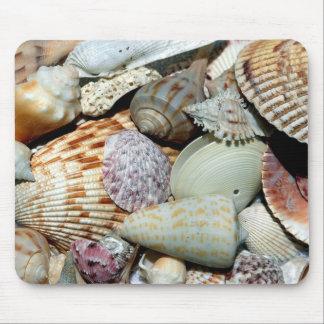 seashells tapetes de raton